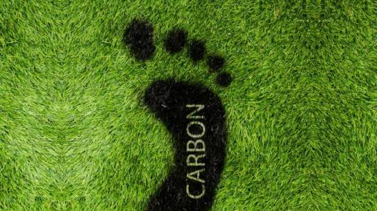 "What is your ""carbon footprint"" size?"